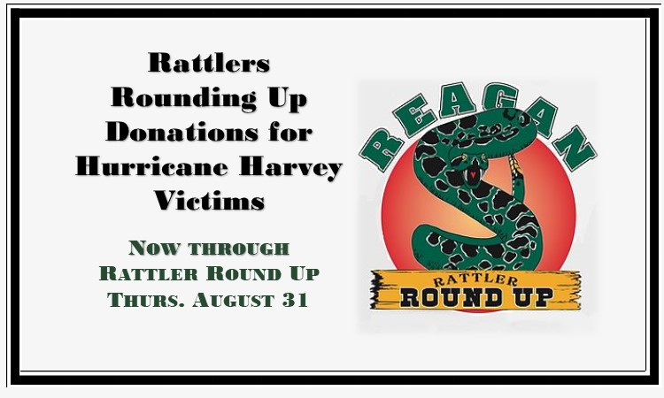 Rattlers Rounding Up Donations for website