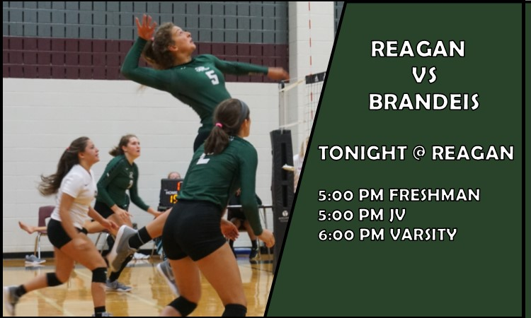 Volleyball vs Brandeis