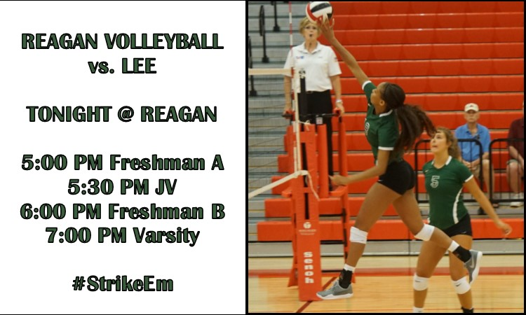 Volleyball vs Lee